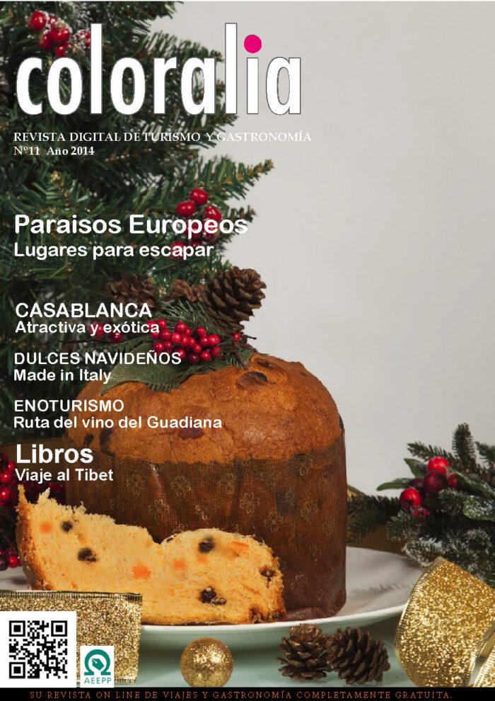 Portada Revista Traveling 11