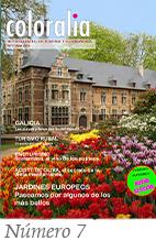 revista coloralia num 7
