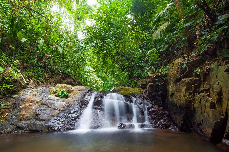 Caminos de Osa Costa Rica