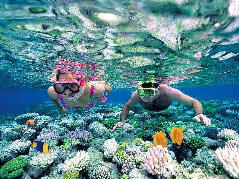 snorkel en la República dominicana
