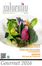 Revista Traveling gastronomía 2016