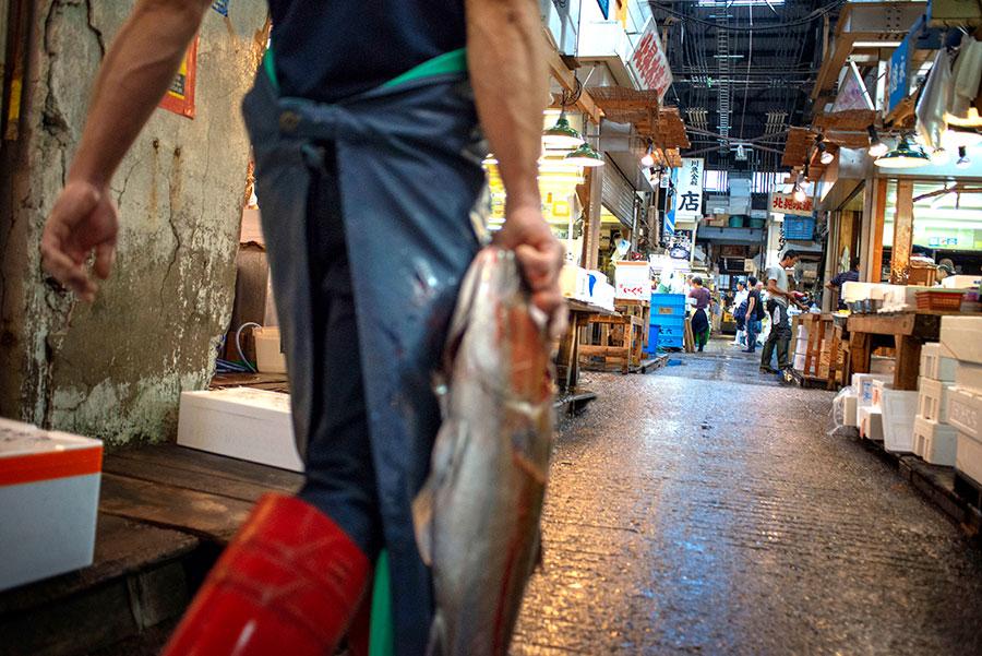 Lonja del pescado de Tsukiji