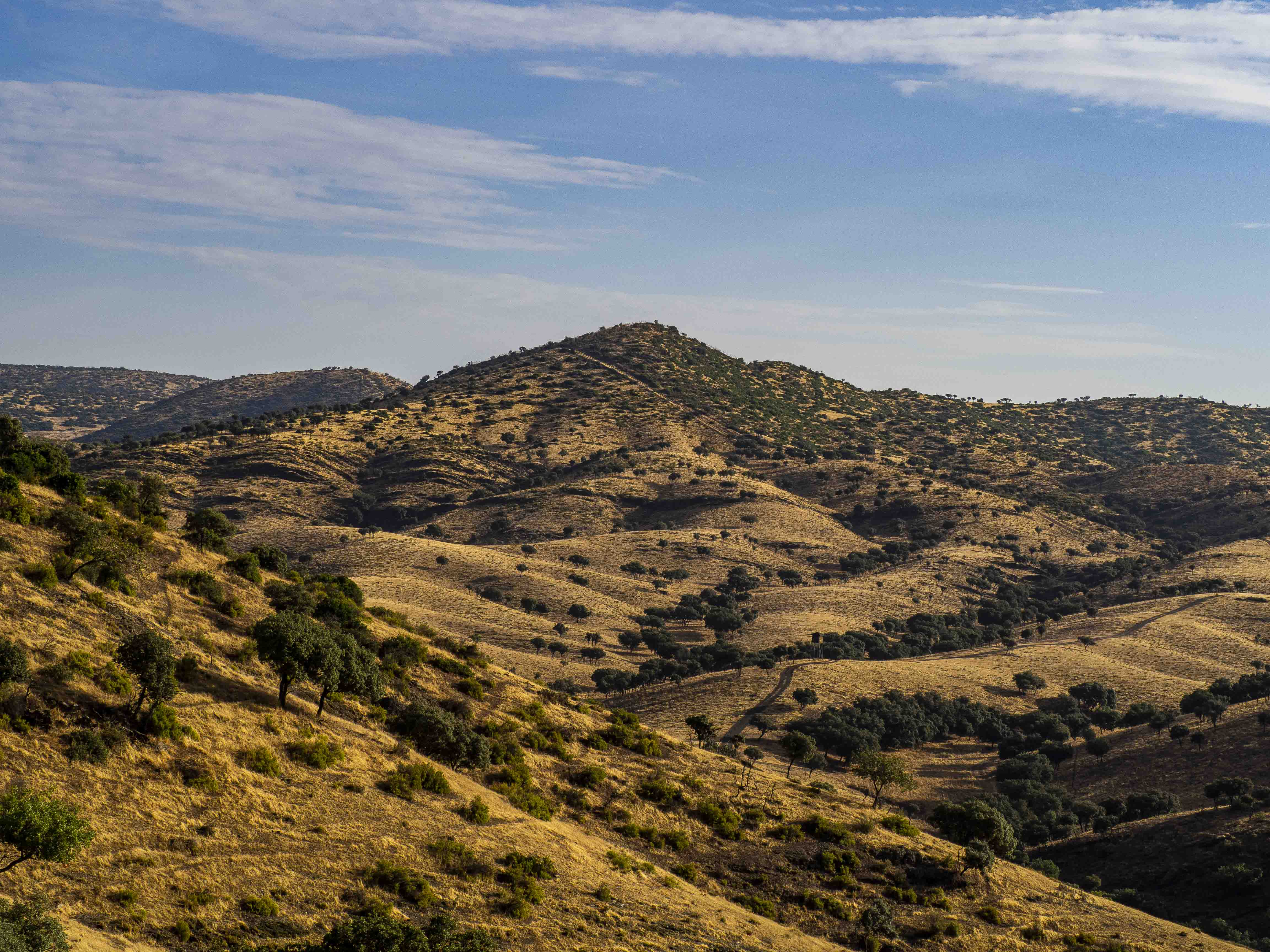Vista del paisaje que durante el safari recorremos