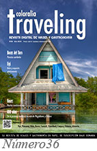 Revista Traveling num 36