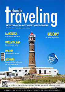 revista traveling numero 41