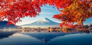 Japón Pangea travel store
