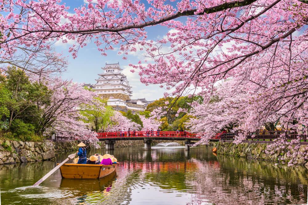 Japón Castillo de Himeji Pangea travel store