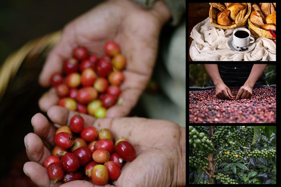 Café de Centroamérica