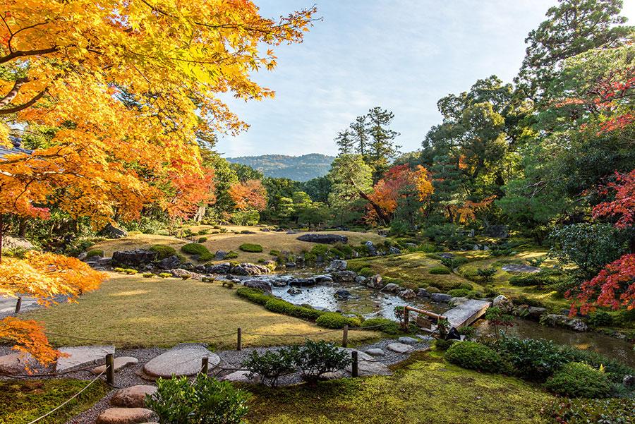 Murinan-Autumn-Mountains