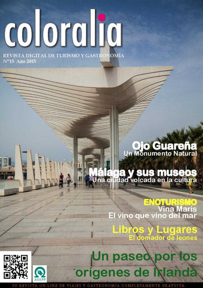 Portada Revista Traveling 15