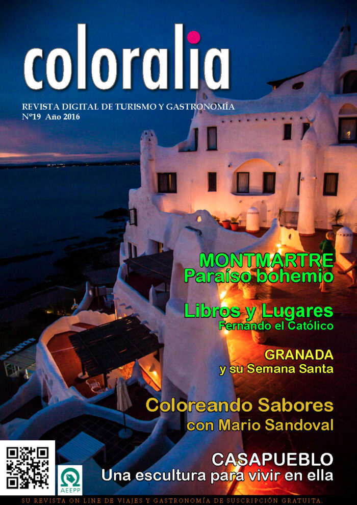 Portada Revista Traveling 19