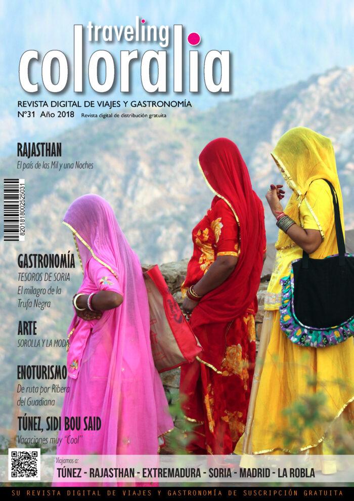 Portada Revista Traveling Nº31