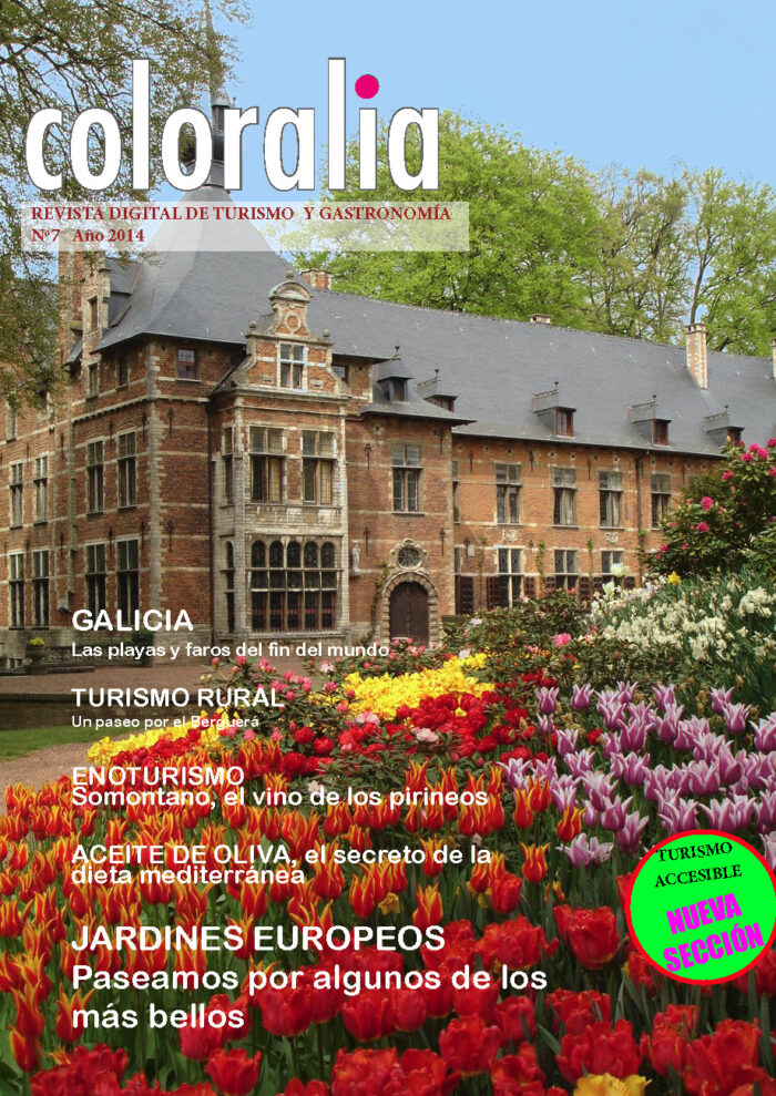 Portada Revista Traveling 7